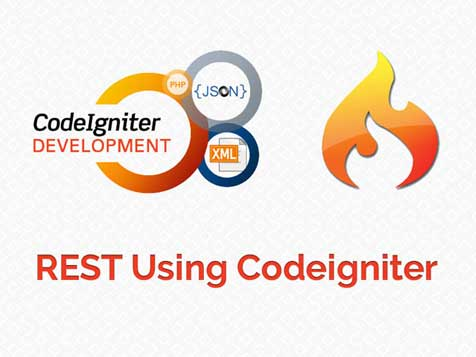 REST using Codeigniter | Custom Software Development