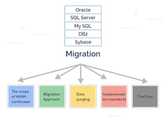 data-migration-sap-hana-optimise